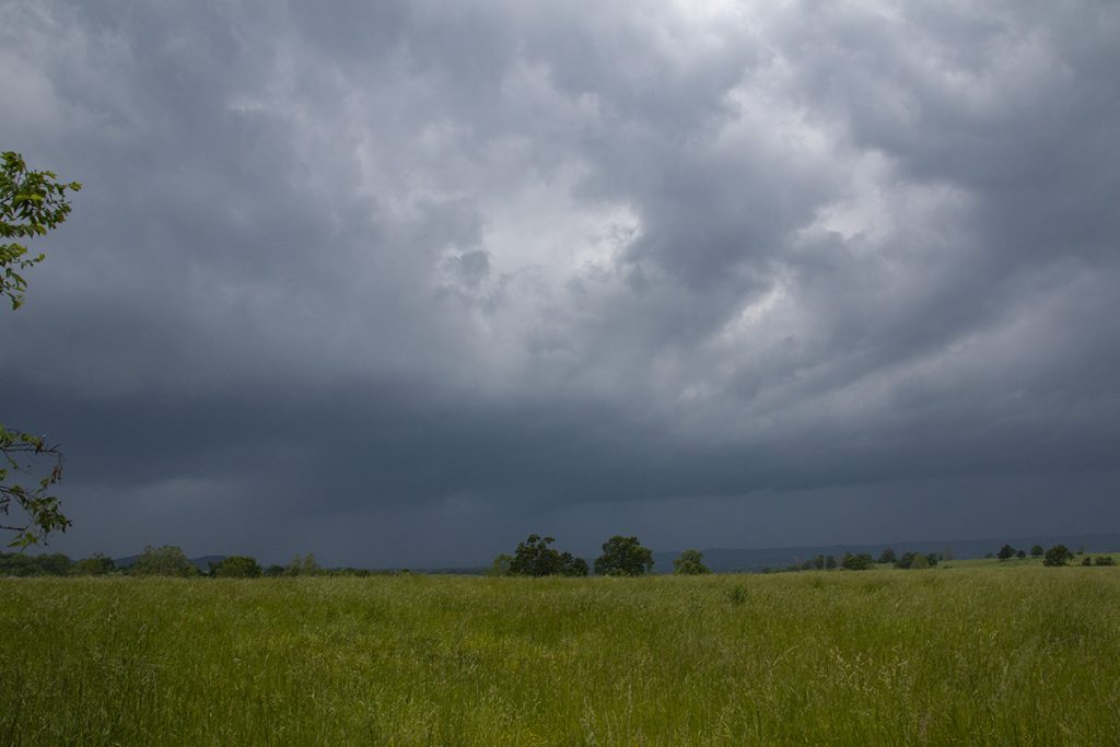Storm Gust Front
