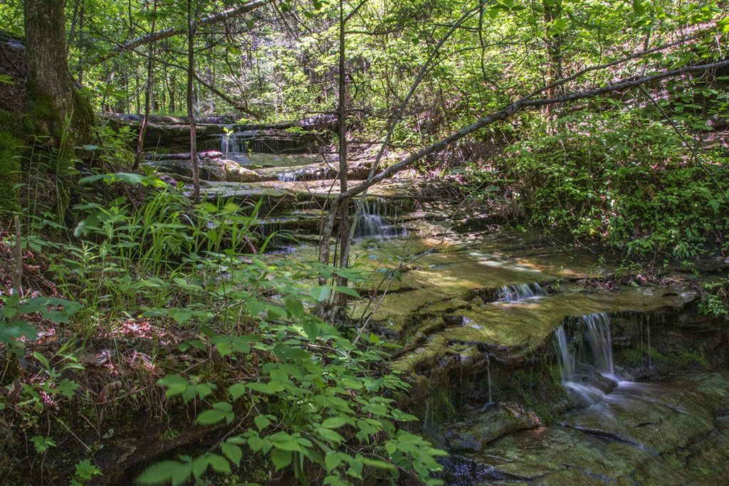cascade above Liles Falls