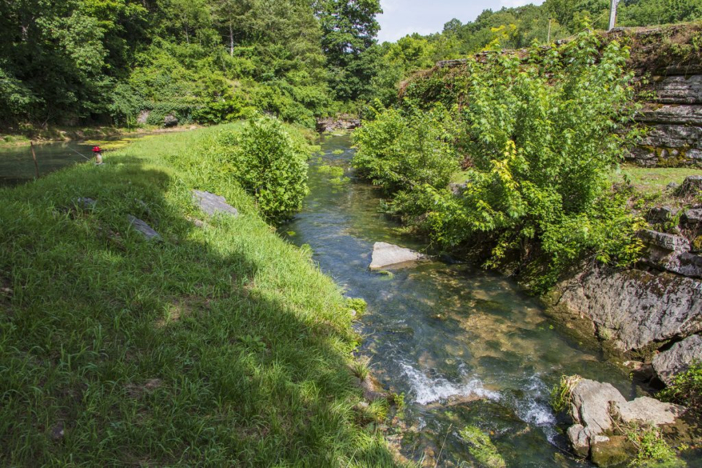 Bear Creek and Trout Farm