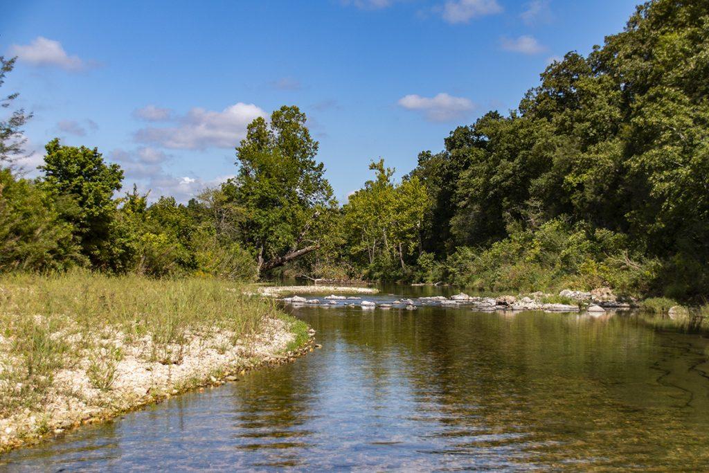 Lower Bear Creek 2