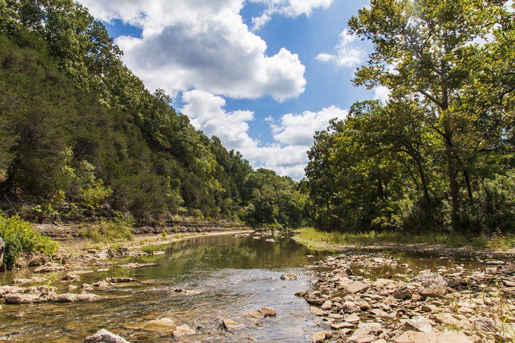 Lower Bear Creek 3