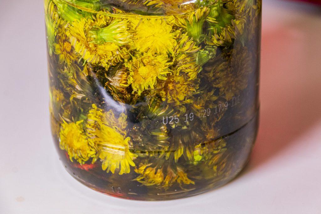 dandelion flowers in oil