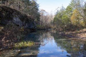 Cecil Creek